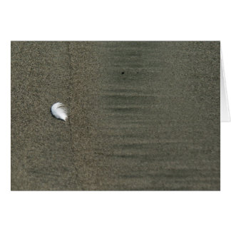 Fluffy white feather on beach Greeting Card