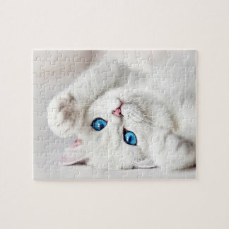 Fluffy White Kitty Game Puzzle