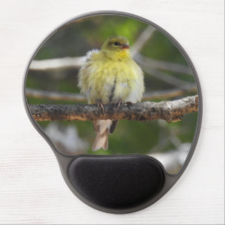 Fluffy Yellow American Goldfinch Female Bird Gel Mouse Pad