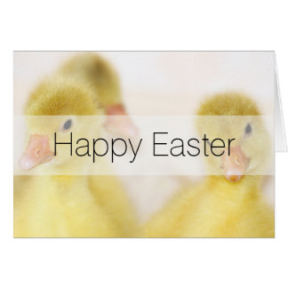 Fluffy Yellow Ducklings Card