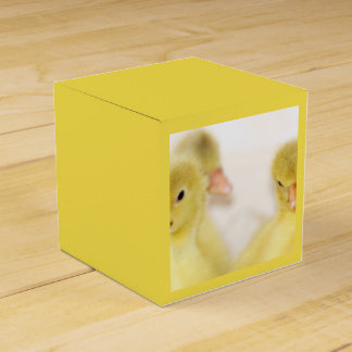 Fluffy Yellow Ducklings Favour Box