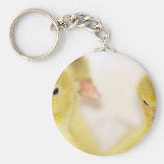 Fluffy Yellow Ducklings Key Ring