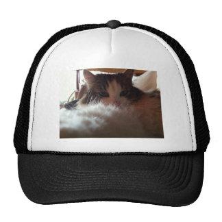 Flumi the Cat Trucker Hat