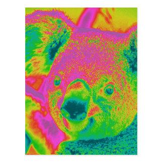 fluorescent koala bears postcard