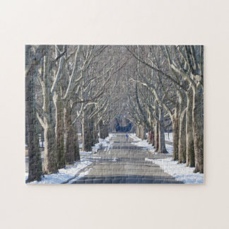 Flushing Meadow Park. Jigsaw Puzzle