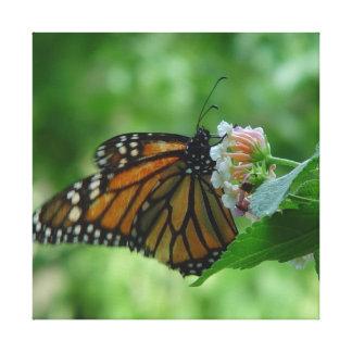 Fluttering Monarch Butterfly Canvas