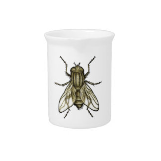 Fly 1a pitcher