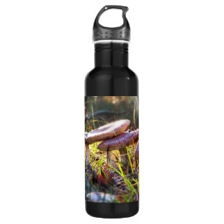 Fly Amanita in the Woodlands 710 Ml Water Bottle