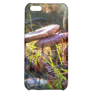 Fly Amanita in the Woodlands iPhone 5C Cover