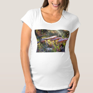 Fly Amanita in the Woodlands Maternity T-Shirt