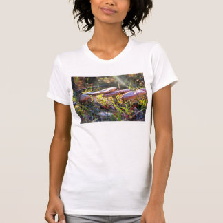 Fly Amanita in the Woodlands T-Shirt