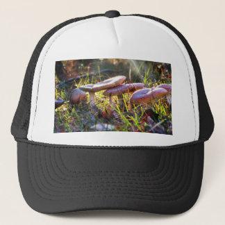 Fly Amanita in the Woodlands Trucker Hat