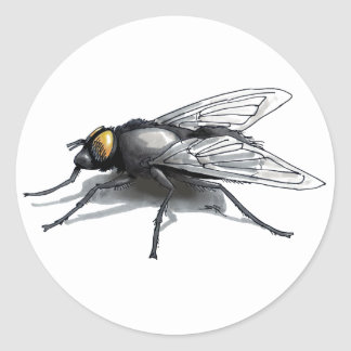 Fly Buddy round sticker