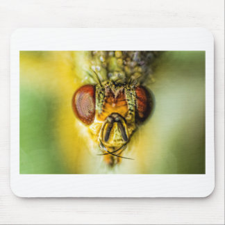 Fly Eyes - up close and personal Mouse Pad