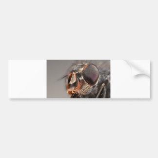 fly face bumper sticker