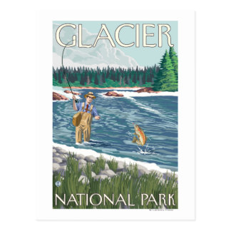 Fly Fisherman - Glacier National Park, MT Postcard