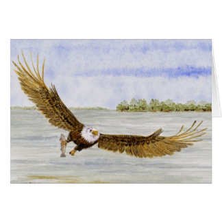 'Fly Fishing-Bald Eagle' Card