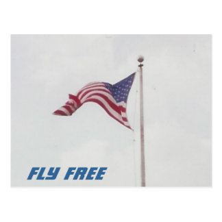 Fly Free USA Flag - postcard