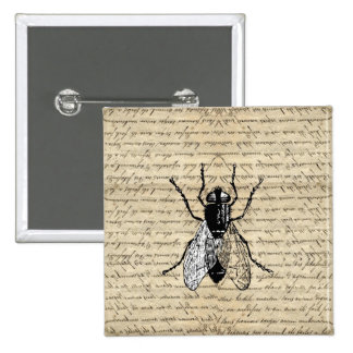 Fly on a vintage background button