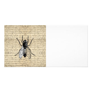 Fly on a vintage background custom photo card