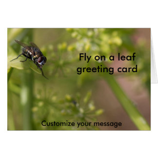 Fly on the wall photography card blank