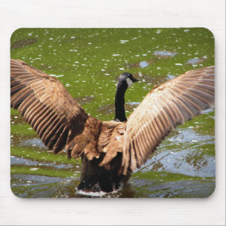 Fly With Me Mouse Pad