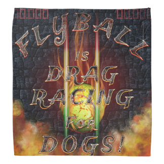 Flyball Flamz: Drag Racing for Dogs! Bandana