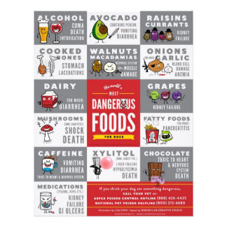 Flyers- The World's Most Dangerous Food For Dogs