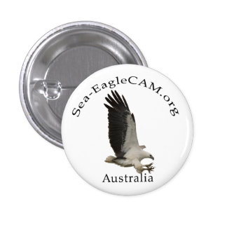 Flying Adult Sea-Eagle Button