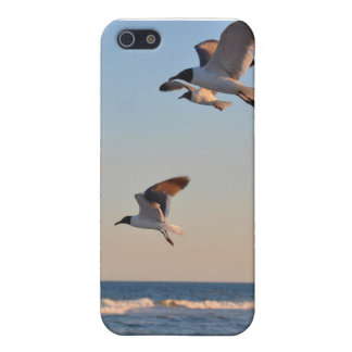 Flying at the beach iPhone 5 cases