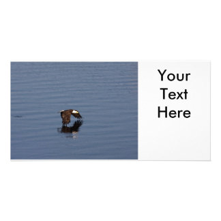 Flying Bald Eagle Photo Card Template