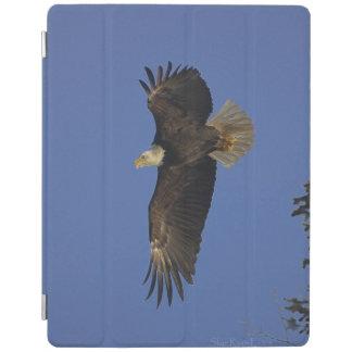 Flying Bald Eagle & Sky Wildlife Photo iPad Cover