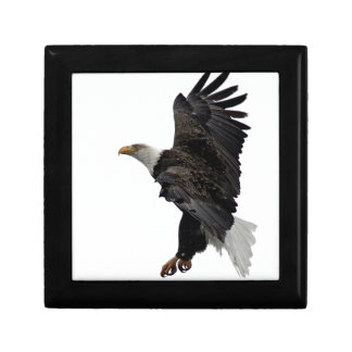 Flying Bald Eagle Small Square Gift Box