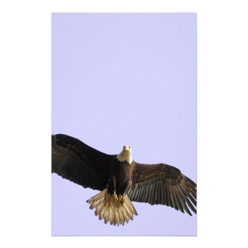 Flying Bald Eagle Wildlife Gift Stationery Paper