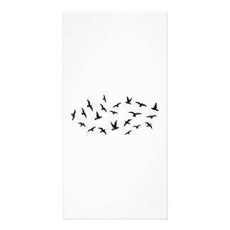 Flying birds photo card