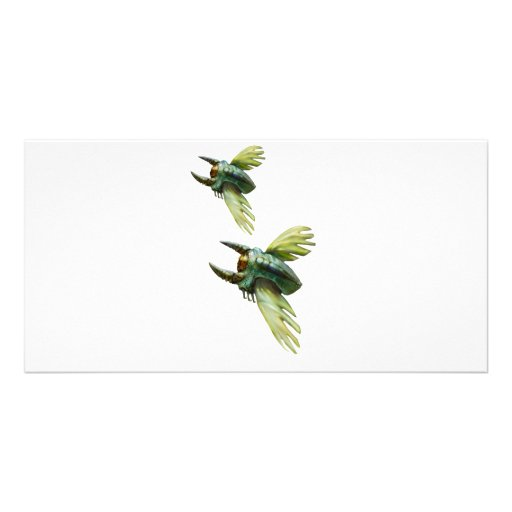 Flying bugs photo cards