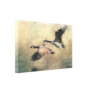 Flying Canada Geese Canvas Print