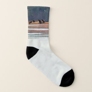 Flying Canadian Geese Socks 1
