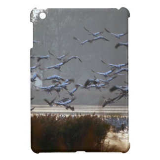 Flying cranes on a lake cover for the iPad mini