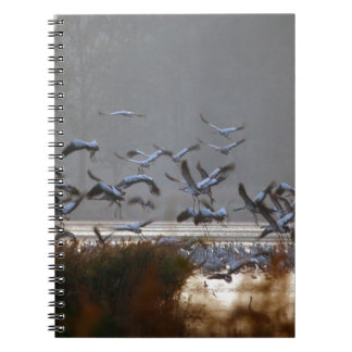 Flying cranes on a lake notebook