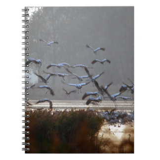 Flying cranes on a lake notebooks