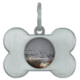 Flying cranes on a lake pet tag