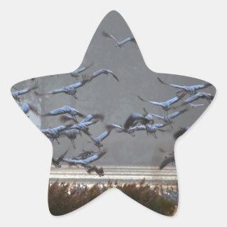 Flying cranes on a lake star sticker