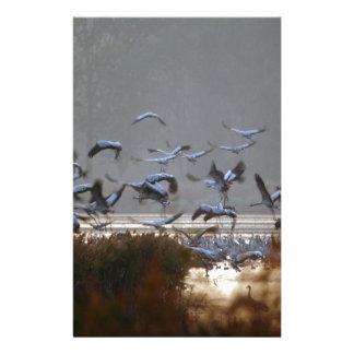 Flying cranes stationery