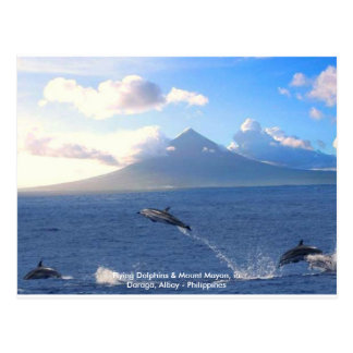 Flying Dolphins & Mount Mayon, Philippine Postcard