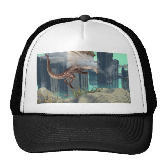 Flying dragon trucker hats