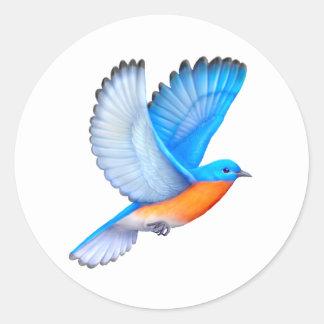 Flying Eastern Bluebird Stickers