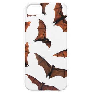Flying fox fruit bats circling in sky case for the iPhone 5
