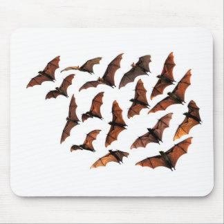 Flying fox fruit bats circling in sky mouse pad