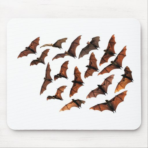 Flying fox fruit bats circling in sky mousepad
